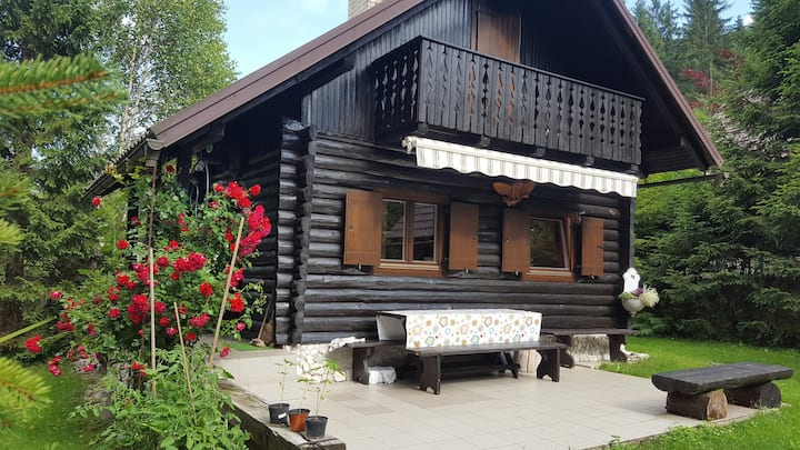 Picture-perfect romantic cabin for nature lovers:)