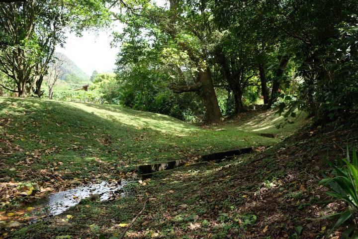 LA CASA ALTA DEL VALLE - El Valle, Panamá