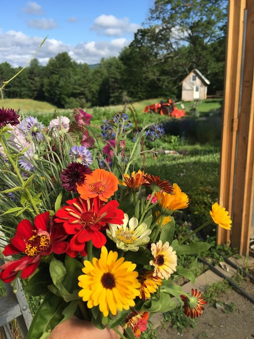 Flower Garden, Greenhouse, and Camping Cabin