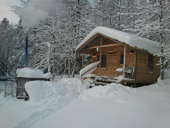 Hus  med bastu och badtunna i Hälsingeskogarna