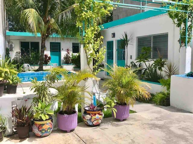 1 BDRM home DOWNTOWN Cozumel- garden & POOL