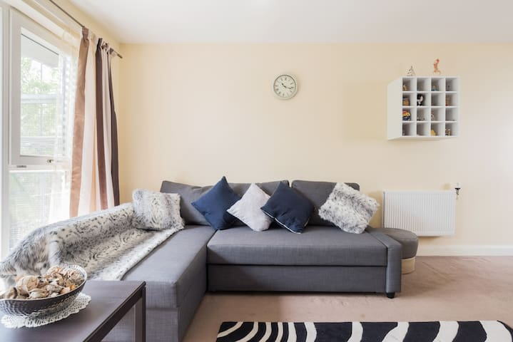 2 bedroom flat with living room and balcony
