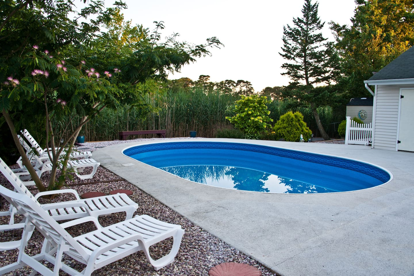 Pool in garden setting