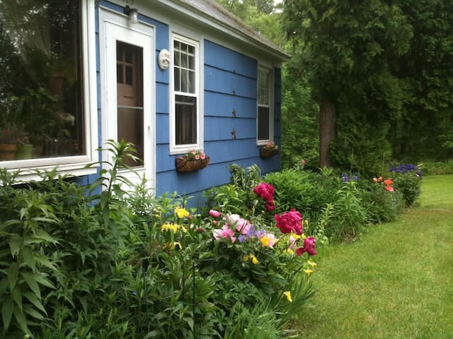 Cozy Cape in the Heart of Southern Berkshires 1 - Great Barrington - House