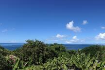 Vue mer a 180°en 1er ligne de la mer des Caraibes