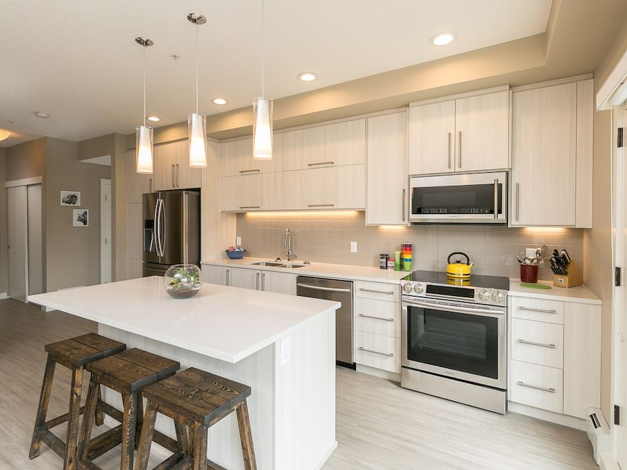 Well equipped kitchen, with new upgraded appliances