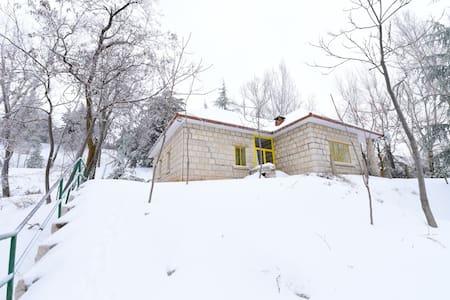 Cozy Mountain Gem in Laklouk