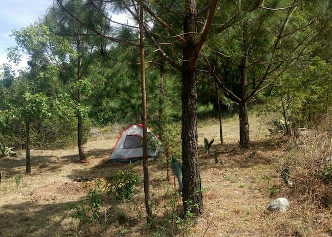 Campamento El Chabacán 1, Laguna de Sánchez