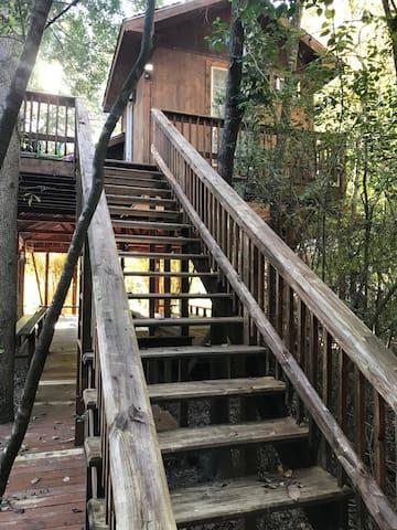 Yoga Treehouse in Houston
