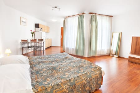 Apartment studio for 3 persons in the City center - Πράγα - Διαμέρισμα