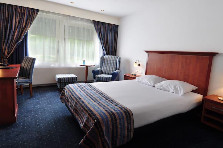 Habitacion Confort Queen