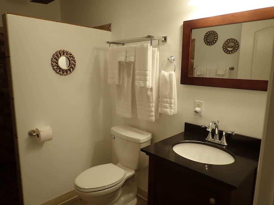 Suite 205 Bathroom