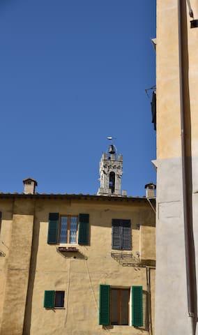 Vista dalle finestre (la Torre del Mangia)