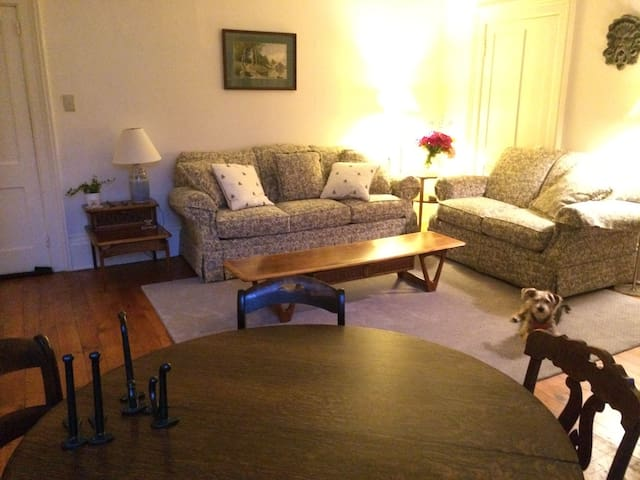 Village Apartment Cooperstown NY - Cooperstown - Apartmen