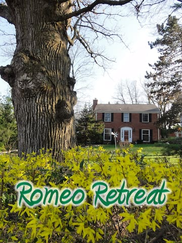 Romeo Retreat - Checkered Room - Romeo - House