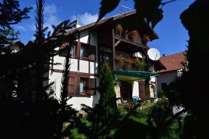 Miris Planina 2 - Zlatibor - Pis