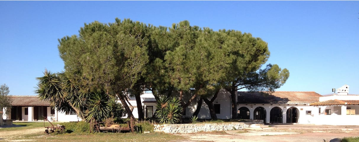 Posta del falco - double in Gargano - Manfredonia - Bed & Breakfast
