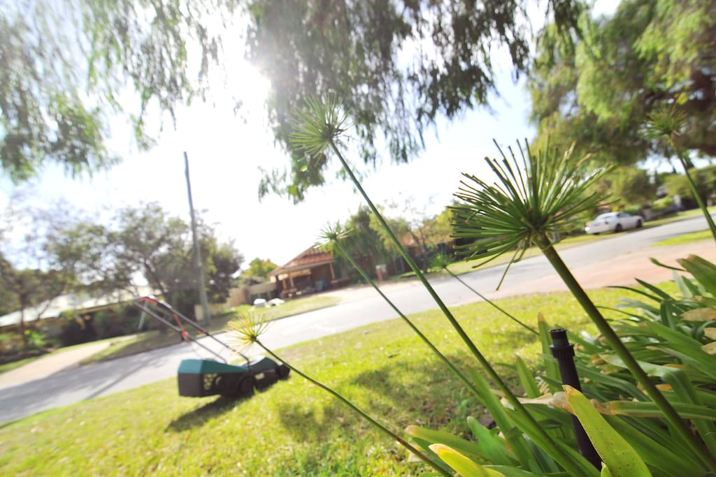 Wake up to the bright and green front yard; looking out from the master bedroom.