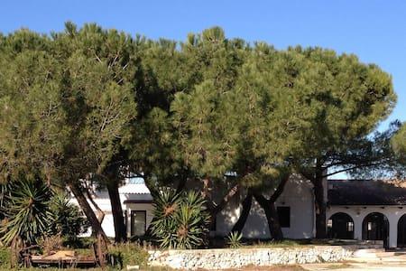 Posta del falco - green in Gargano - Manfredonia