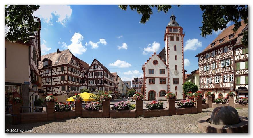 Wohnung im romantischen Mosbach - Mosbach - Apartment