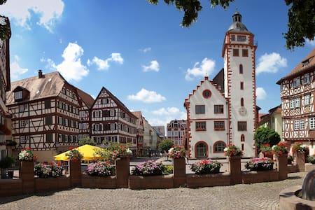 Wohnung im romantischen Mosbach - Mosbach