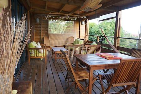 maison bois dans un jardin tropical avec piscine - les avirons