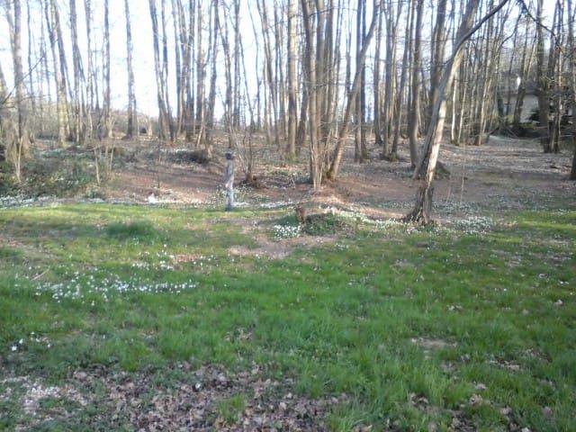 l'orée du bois - Boutigny-Prouais - Byt