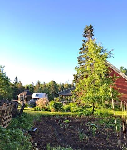 View of my summer abode, with veggie garden in foreground.