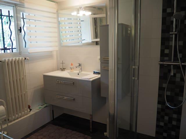 Salle d'eau avec douche à l'italienne et WC