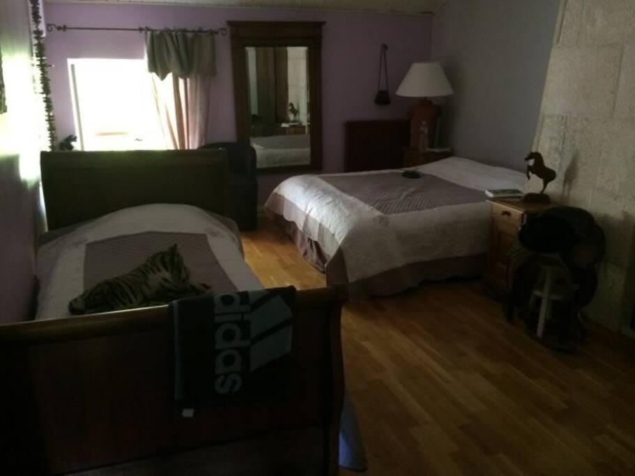 Chambre avec 1 lit double et 1 lit simple très spacieuse très lumineuse