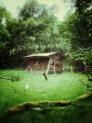 Thar an Altain -Tal's woodland Hut - Balquhidder