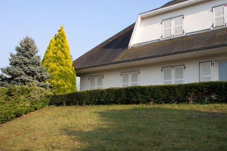Villa avec piscine - Digoin