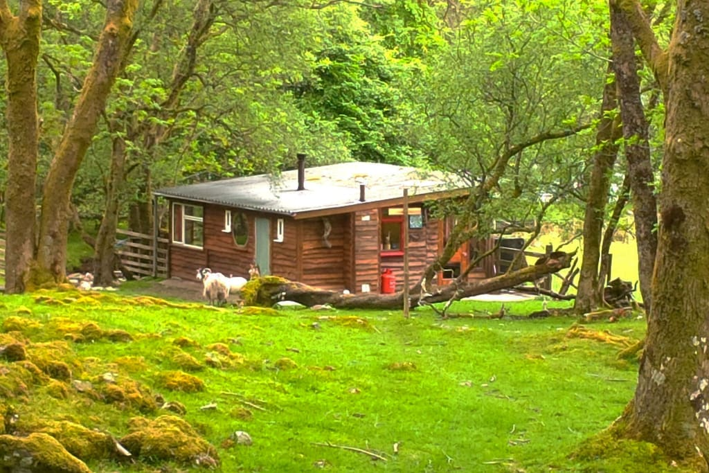 Outer Space Scottish Highland Cabin Cabins For Rent In