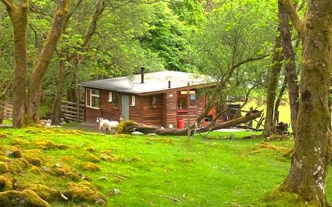 Cabină Scoțiană Highland Outer Space
