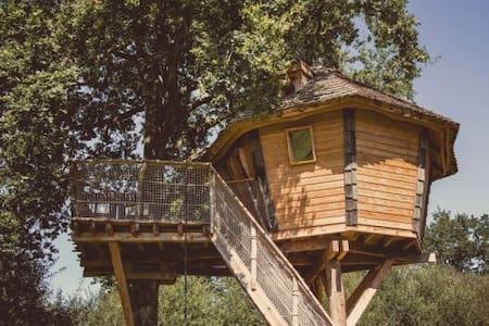 La Chouette Cabane - Lapone - Pommerieux - ツリーハウス