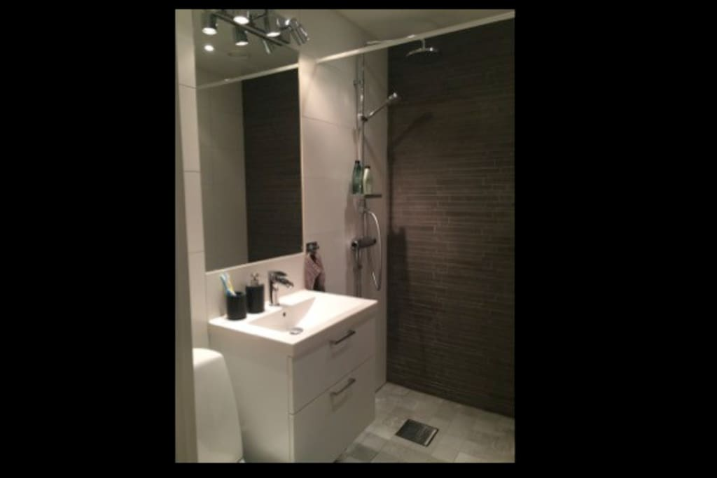 Newly renovated (2014) bathroom with shower.