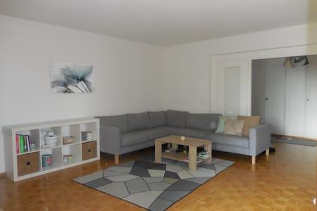 Appartement cosy - Vernier