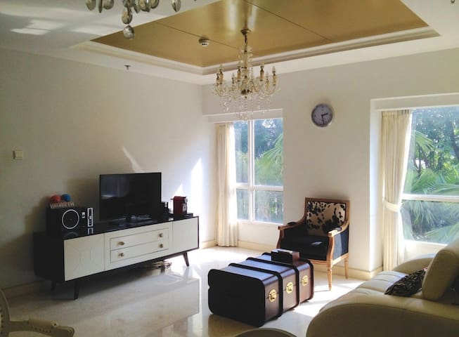 Lovely apartment with hotel amenities