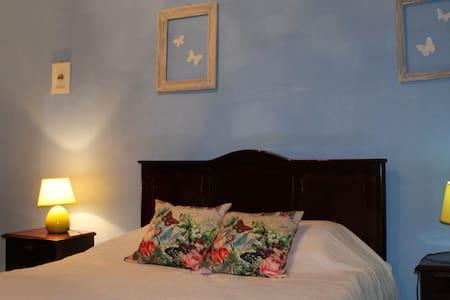 Butterflies`Room - Castelo Branco