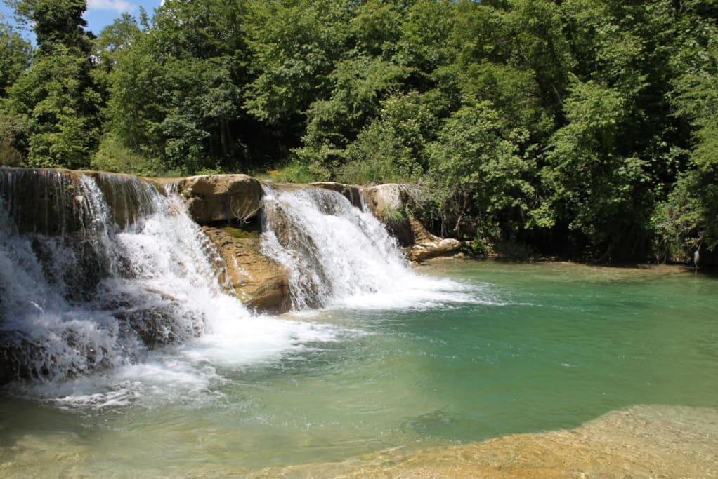 torrente Auro