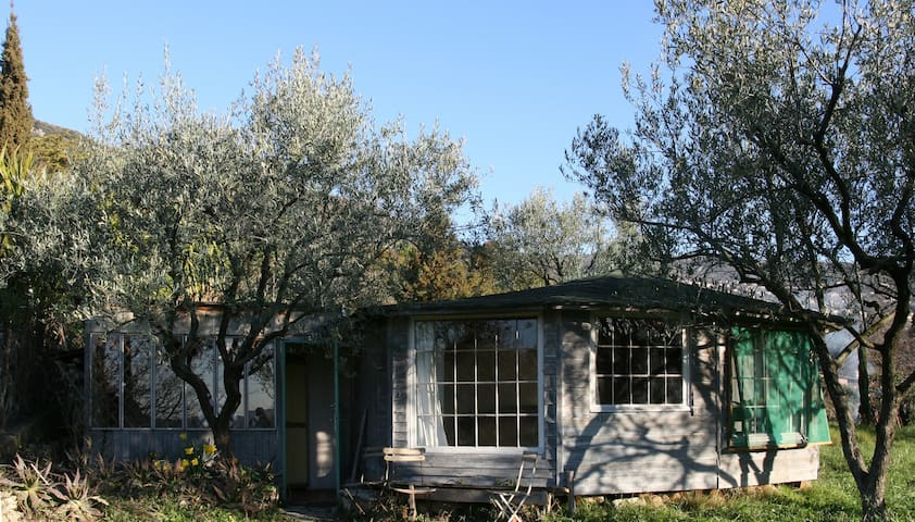 Romantic little chalet in olive grove - Grasse - Cabin
