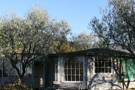 Romantic little chalet in olive grove - Grasse - Blockhütte