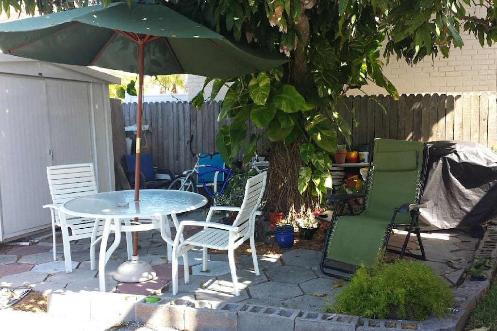 Your Patio Area Under The Mango Tree With BBQ Grill.