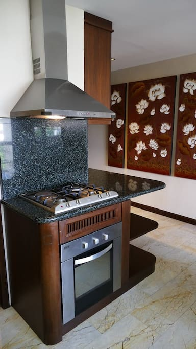 Stainless steel hood, gas stove and convection oven