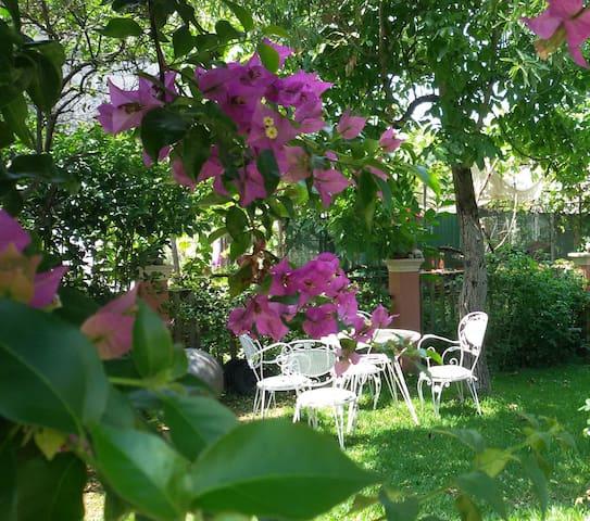 Σπίτι με κήπο - Kérkira - House