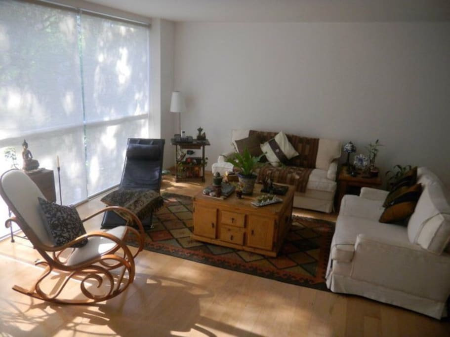una estancia comoda con una luz preciosa y comodos sofas
