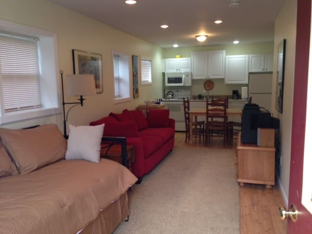 Modern 1BR Apartment - Sleeps 3 - Hartwick - Apartamento