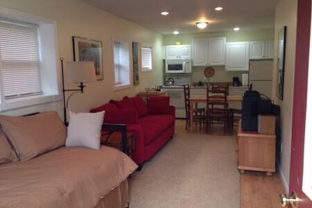 Modern 1BR Apartment - Sleeps 3 - Hartwick - Leilighet