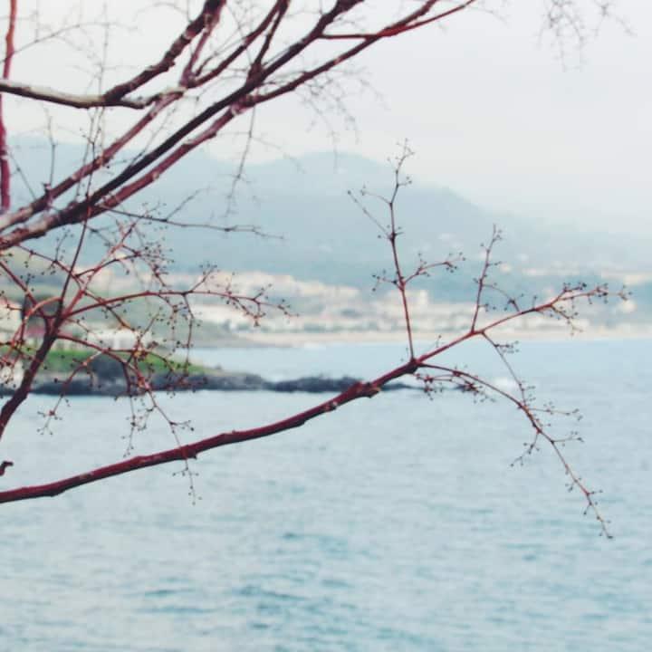 Stanza con finestra sul mare in B&B + colazione