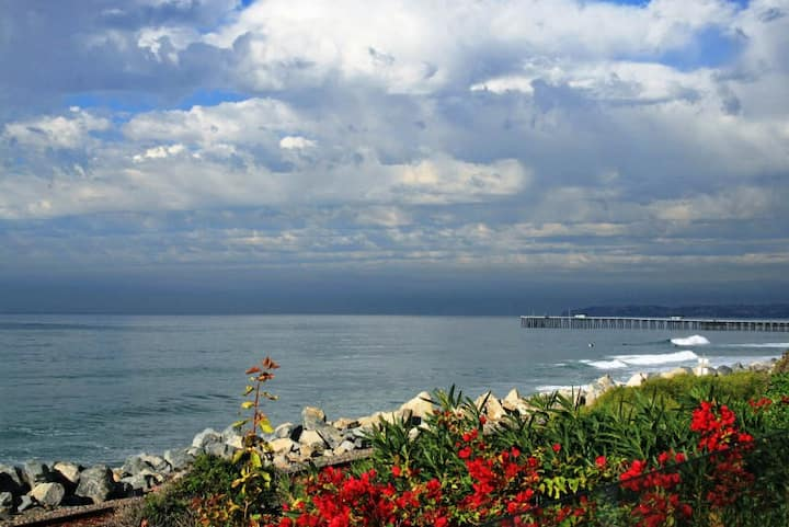Luxury Beachfront,  Spa, Deck, Walk to Pier & Surf